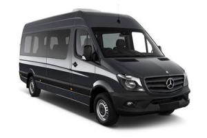 14 passenger Van-Fleet Vehicle | Linximo